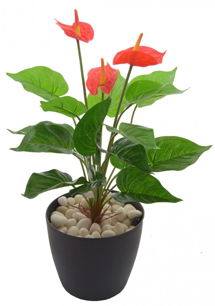 Buy Polyurethane Artificial Anthurium Plant With PVC Coated Leaves (46 Cm, Red) Online