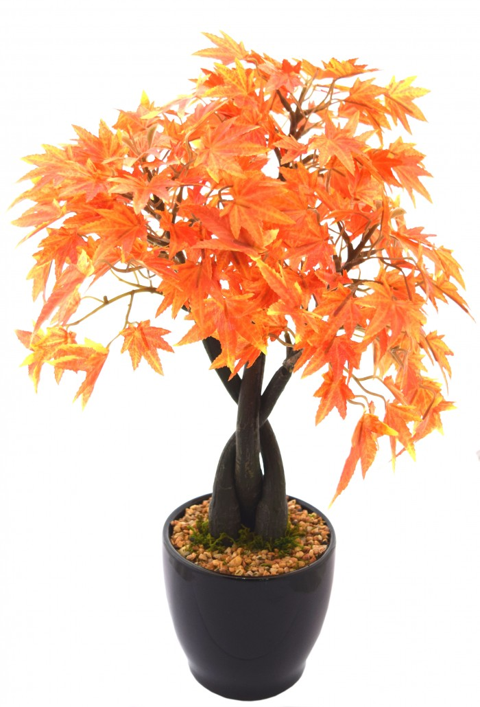 Buy Artificial Japanese Maple Plant In A Chic Ceramic Pot Online