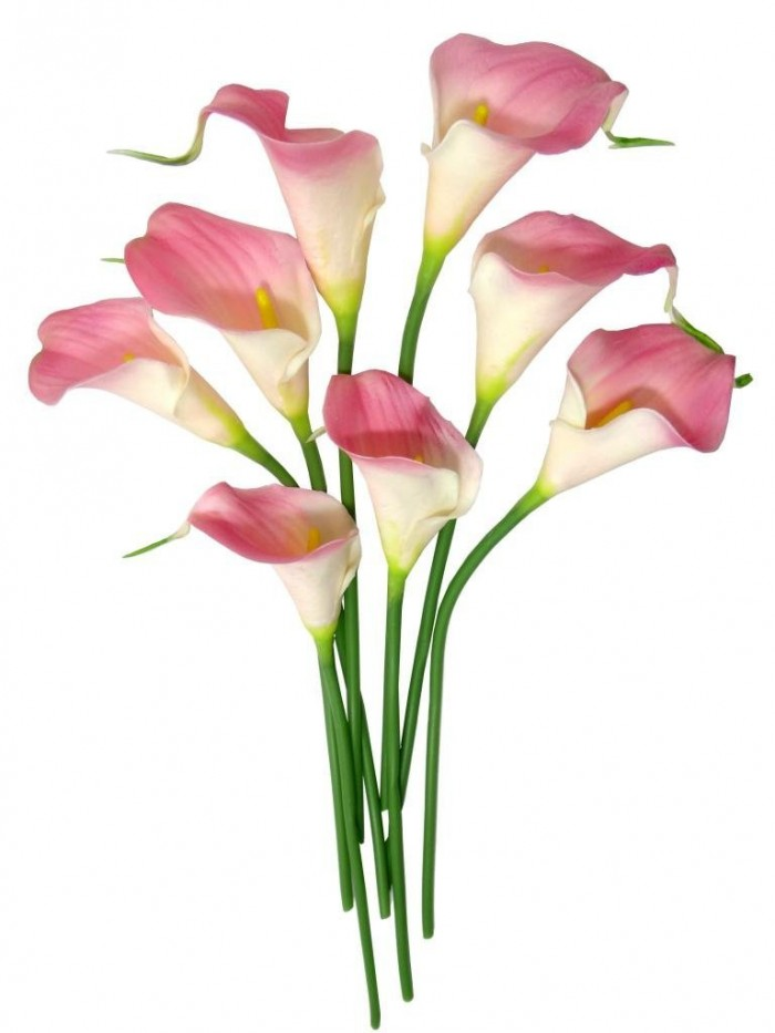 Buy Synthetic Mini Calllily Flower (Set Of 8, Light Pink) Online