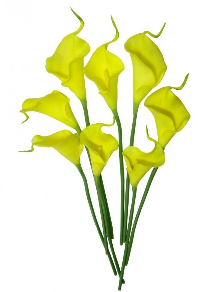 Buy Synthetic Mini Calllily Flower (Set Of 8, Yellow) Online