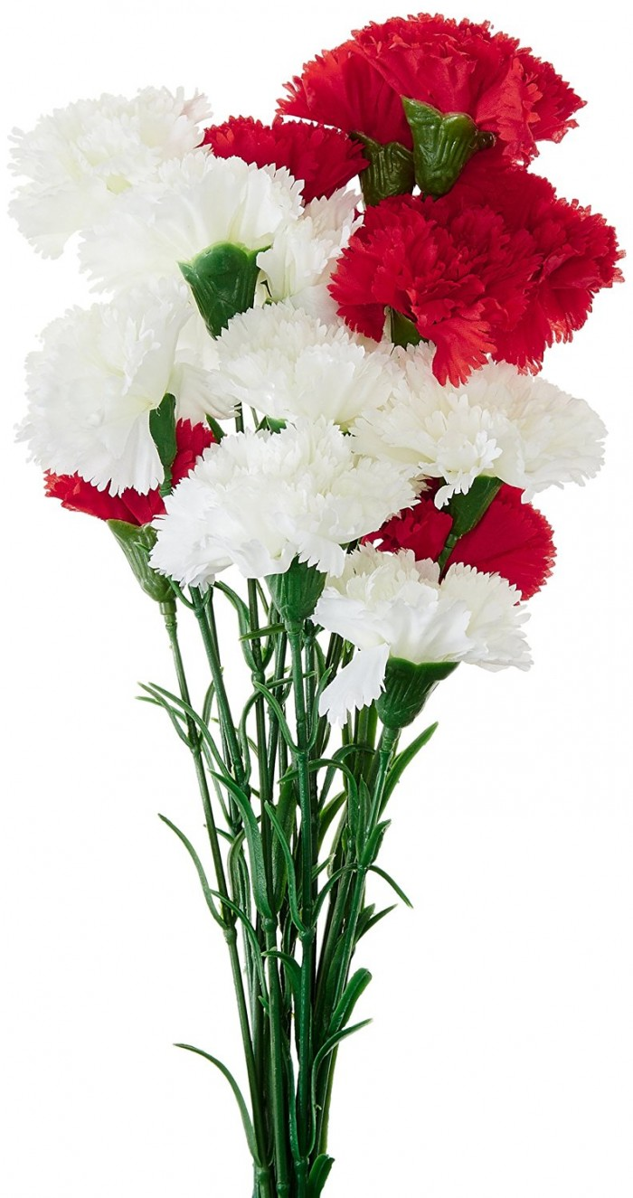 Buy Fourwalls Artificial Synthetic Single Carnation Flower Stick (45 Cm Tall, Set Of 15, Red And Whi