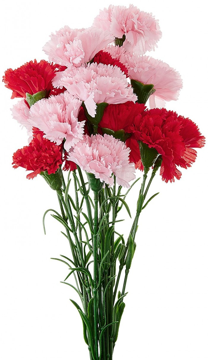 Buy Fourwalls Artificial Synthetic Single Carnation Flower Stick (45 Cm Tall, Set Of 15, Red And Pin