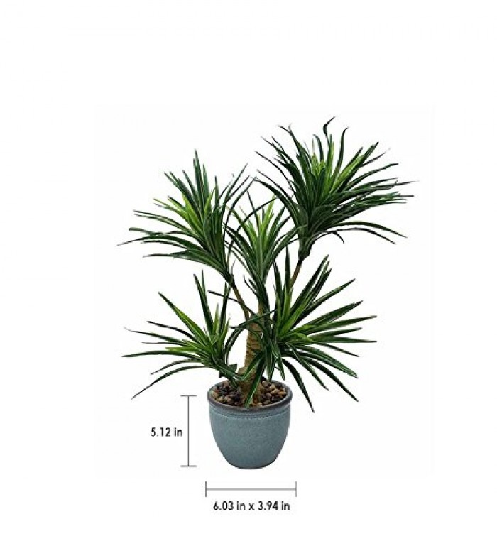 Buy Artificial Yucca Bonsai Plant With Pot (60 Cm) Online