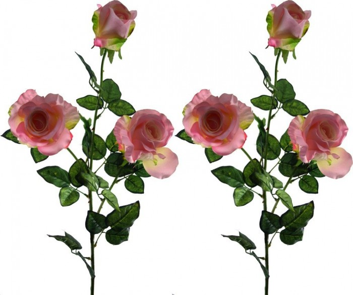 Buy Fourwalls Artificial Fourwalls 3 HD ROSE (Set Of 2,) Online
