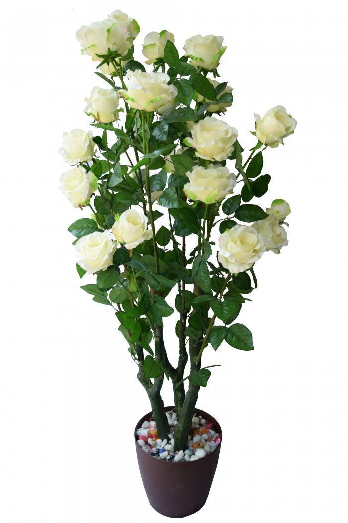 Buy Decorative Polyester Artificial Rose Plant Without Pot (155 Cm, White) Online