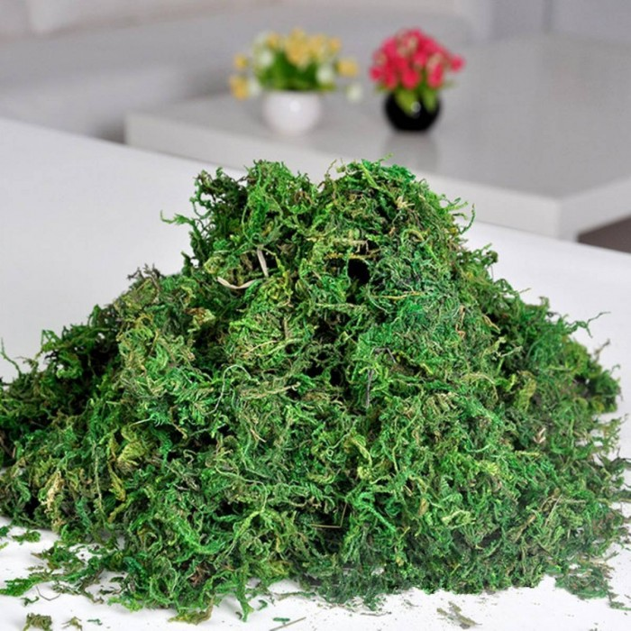 Buy Fourwalls Artificial Green  Reindeer Moss For Lining Plant Flower Garland Decor 1 Kg Paket Onlin