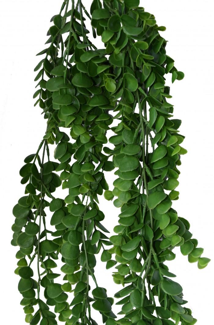 Buy Fourwalls Artificial PVC 60 Cm Tall Eculiptus Hanging Green Wall Artificial Green Grass Online