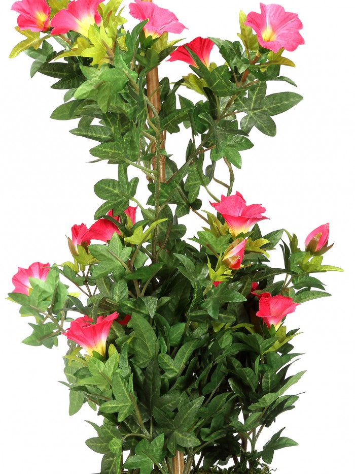 Buy Artificial Morning Glory Bonces Plant Wath Pot (63 Cm ) D/pink Online