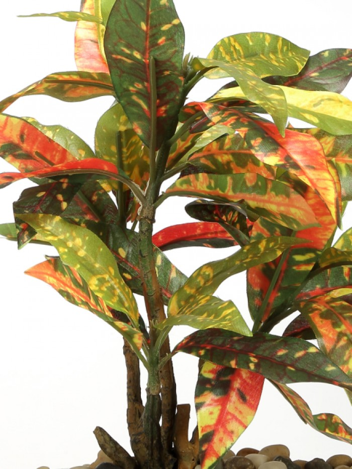 Buy 29 Cm Tall Decorative Artificial Croton Plant In A Chic Ceramic Pot Online