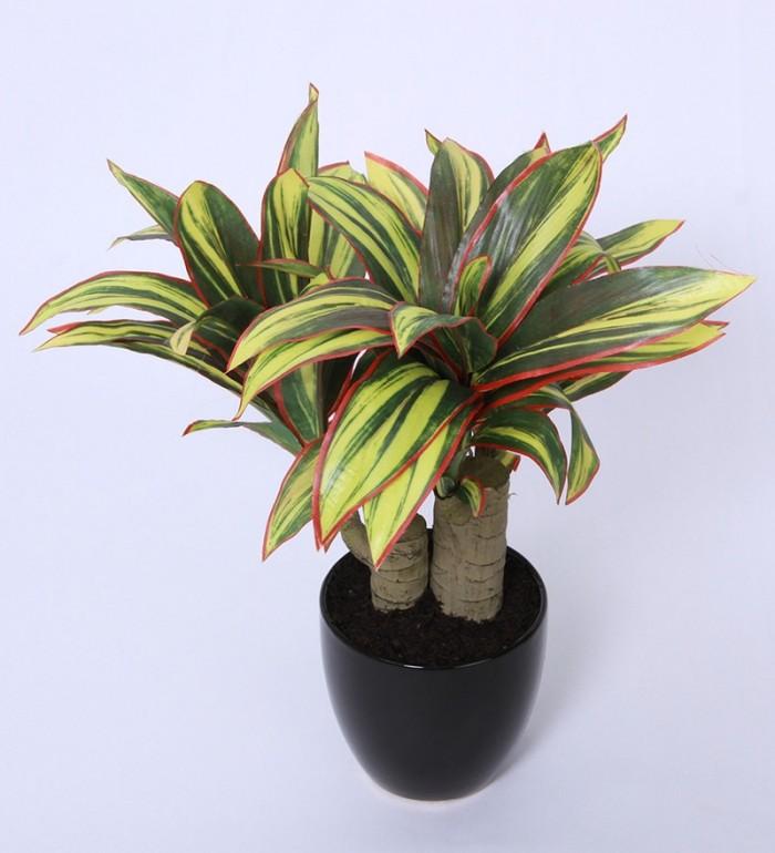 Buy Artificial Clathia Bonsai Plant Ceramic Vase Pot(35 Cm Green) Online