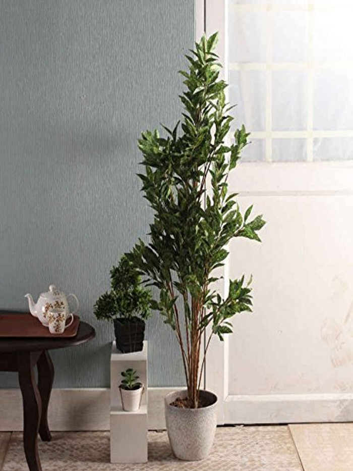 Buy Fourwalls Decorative Artificial Croton Plant (760 Leaves, 150 Cm) Online