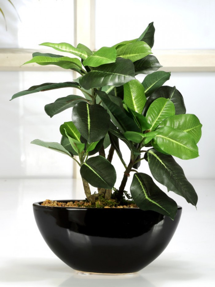 Buy Artificial Quercus Ceramic, Polyester And Polyurethane Bonsai Plant In A Pot (18 Cm X 10 Cm X 29
