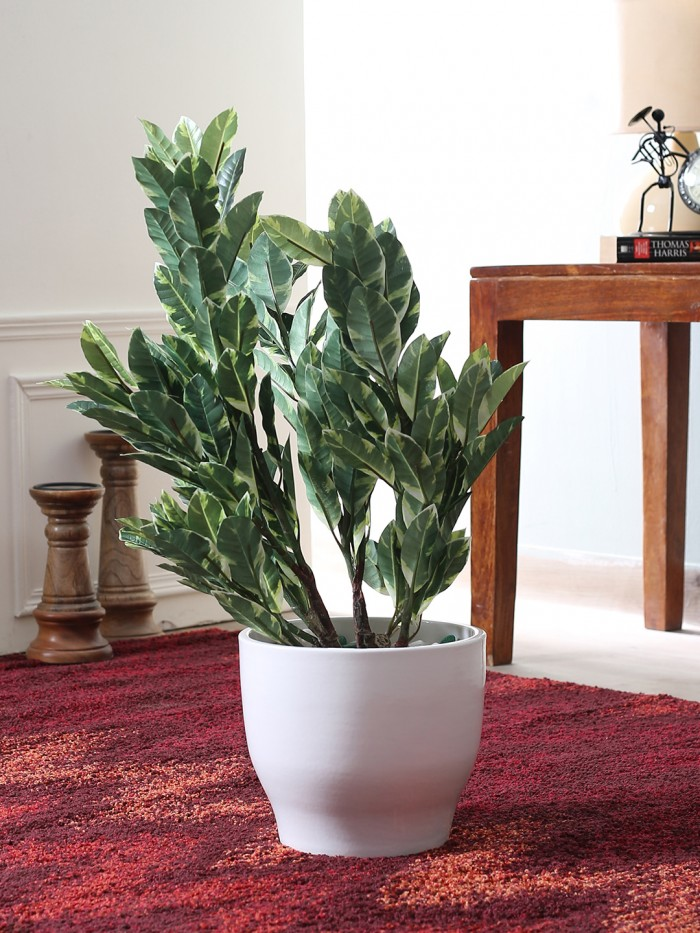 Buy Artificial 60 Cm Tall Mini Quercus Plant Without Pot (White And Green) Online