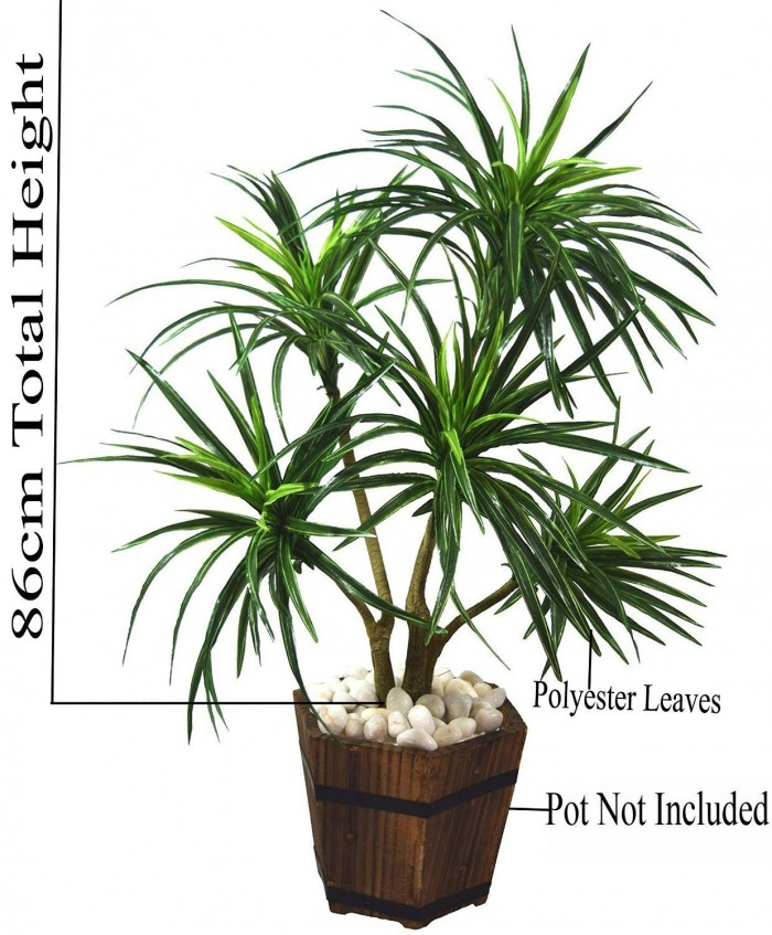 Buy Fourwalls 92cm Tall Decorative Artificial Dracaena Plant Without Pot (220 Leaves, 5 Branches, Gr