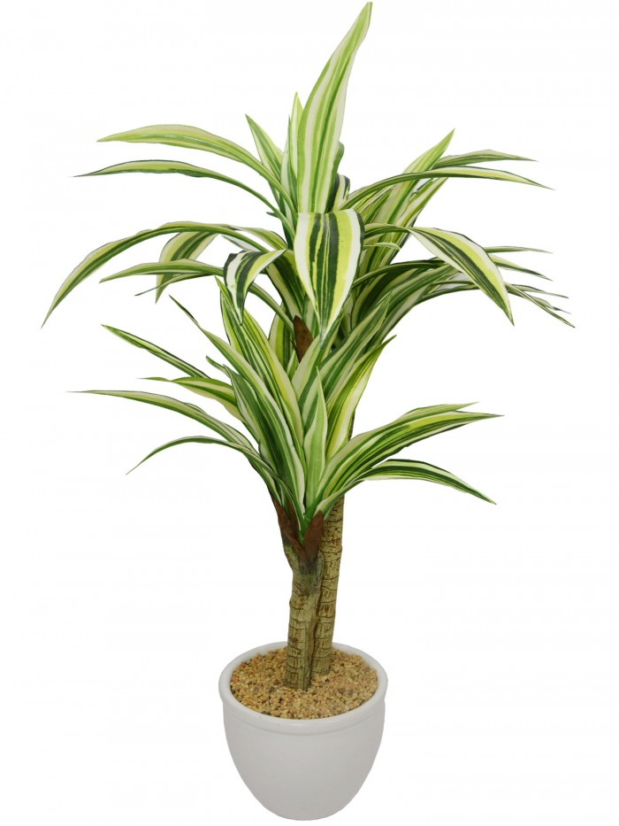 Buy Fourwalls Artificial Dracaena Bonsai Plant In A Ceramic Vase For Home And Office Décor (71 Cm,