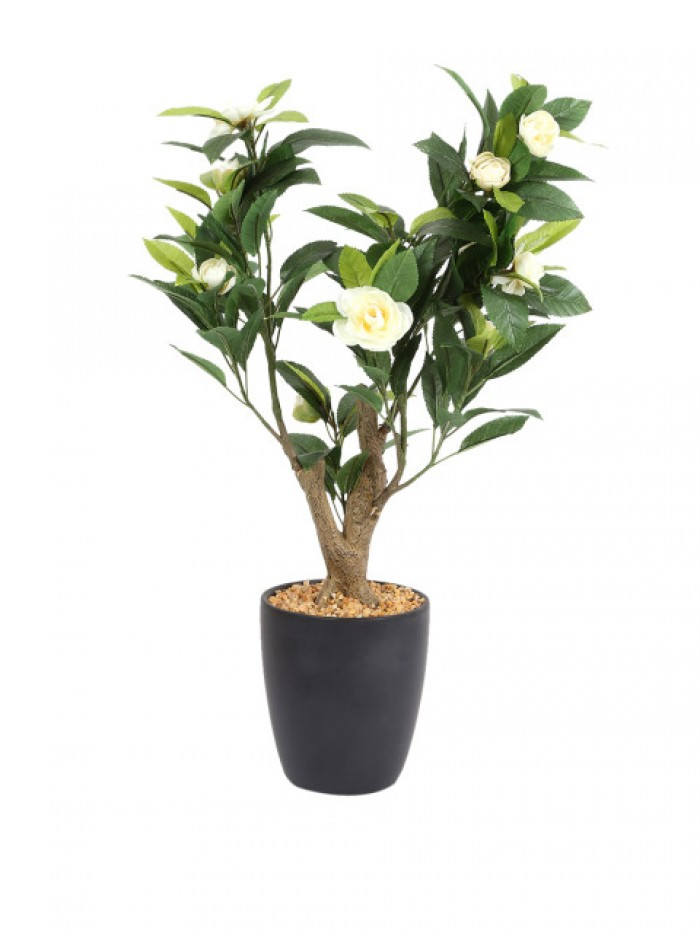 Buy Fourwalls Premium Range Artificial Camelia Plant With Stylish Ceramic Vase (White) Online