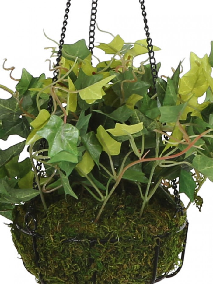 Buy Fourwalls Decorative Polyester Artificial Ivy Bush Plant With Hanging Basket (40 Cm, Green, HANG