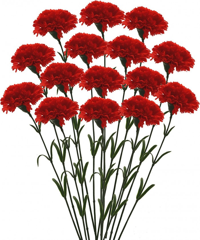 Buy Fourwalls Artificial Synthetic Single Carnation Flower Stick (45 Cm Tall, Set Of 15, Red) Online