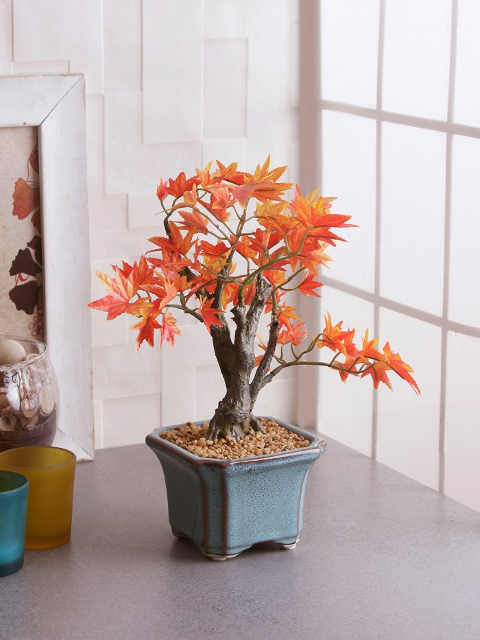 Buy Fourwalls Bonsai Japanese Maple Plant (233 Leafs, 39 Cm, Mixed Material, Orange) Online