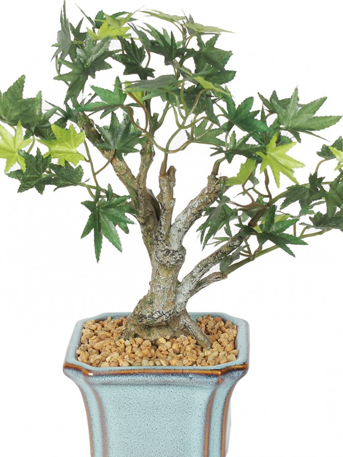 Buy  Fourwalls Bonsai Japanese Maple Plant (69 Leafs, 28 Cm, Mixed Material, Green) Online