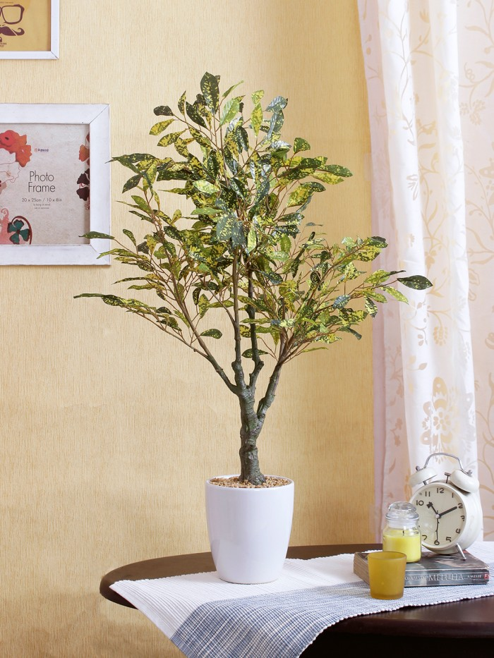 Buy D144:D158Premium Range Artificial Croton Plant With Stylish Ceramic Vase (Green/Yellow, 70 Cm Ta