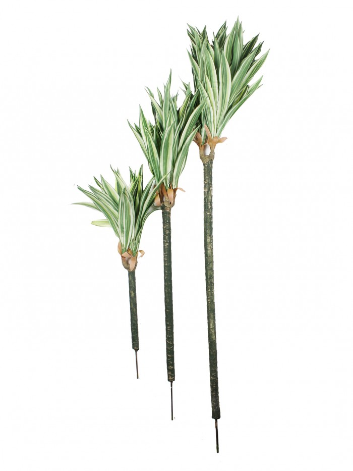 Buy Fourwalls Artificial Dracaena Floor Plant Without Pot (150 Cm Tall, 3  Trunks, Green/White) Onli