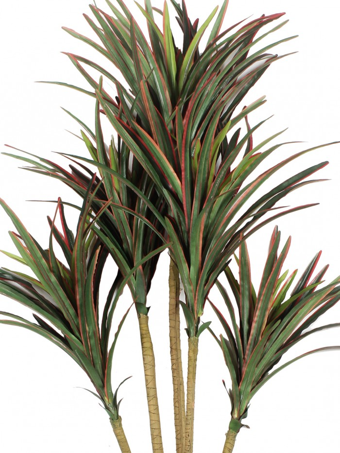 Buy Fourwalls 92cm Tall Decorative Artificial Dracaena Plant Without Pot (220 Leaves, 5 Branches, Re