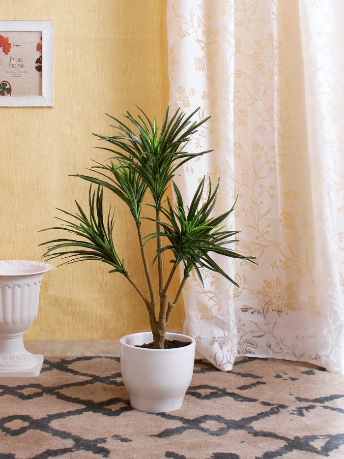 Buy 92cm Tall Decorative Artificial Dracaena Plant Without Pot (220 Leaves, 5 Branches, Green) Onlin