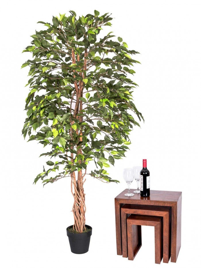 Buy Fourwalls 190 Cm Tall Decorative Polyester Artificial Ficus Plant With Out Pot (190 Cm, Green) O