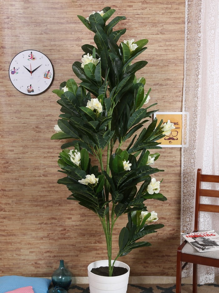 Buy Decorative Artificial Frangipani Plant Without Pot (83 Flowers, 185 Cm Tall, Green/White) Online