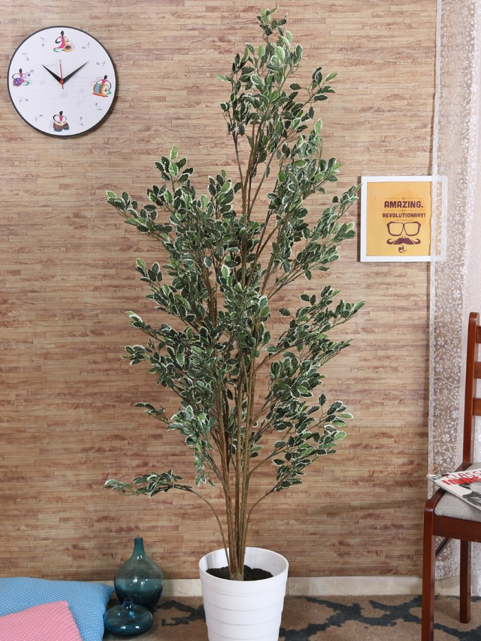Buy Artificial Jade Green Floor Plant Without Pot (150 Cm Tall, Green, 1692 Leaves, 10 Branches) Onl