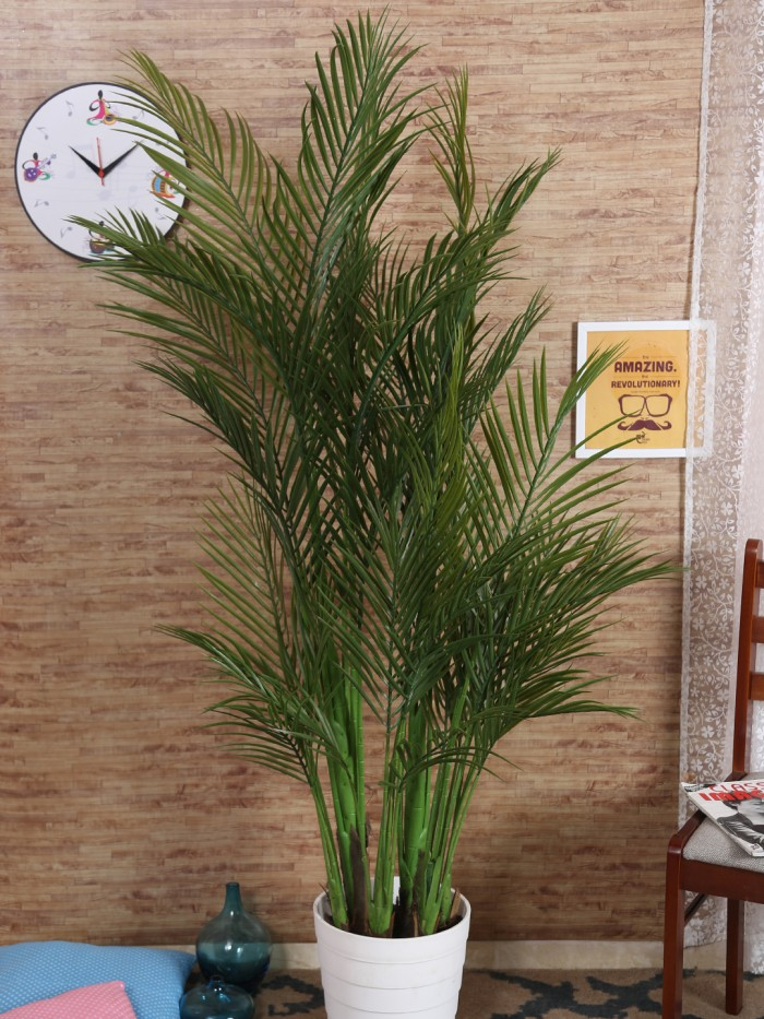 Buy Decorative Artificial Arica Floor Plant With Pot (160 Cm Tall, 6 Branches, Green) Online