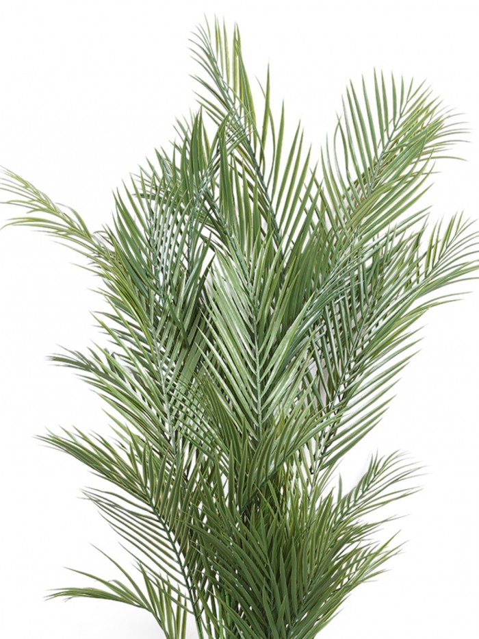 Buy Decorative Artificial Arica Floor Plant Without Pot (160 Cm Tall, 6 Branches, Green) Online