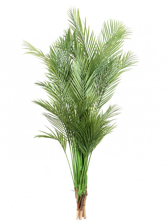 Buy Decorative Artificial Arica Floor Plant Without Pot (140 Cm Tall, 5 Branches, Green) Online