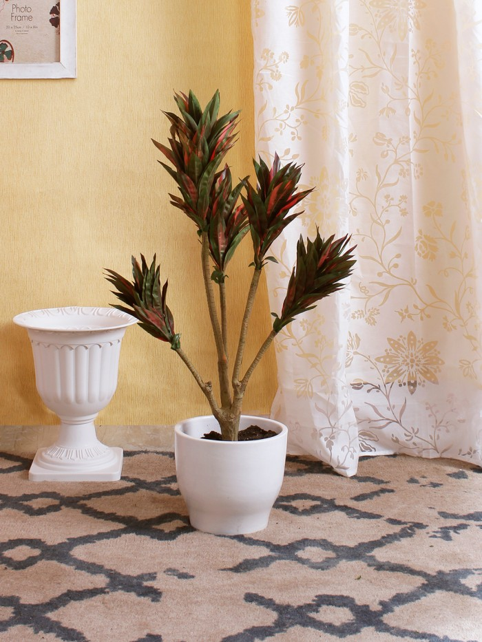 Buy Fourwalls 86cm Tall Decorative Artificial Dracaena Plant Without Pot (171 Leaves, Red And Green)