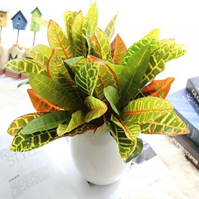 Buy Beautiful Artificial Plastic Croton Plant Mini Bush (15 Cm X 15 Cm X 35 Cm, Set Of 2) Online