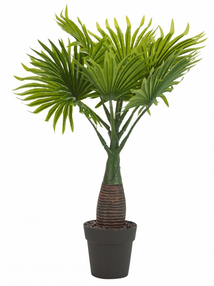 Buy Synthetic Artificial Bonsai Fan Palm Plant With Vase (10 Branches, Green, 40 Cm Total Height) On