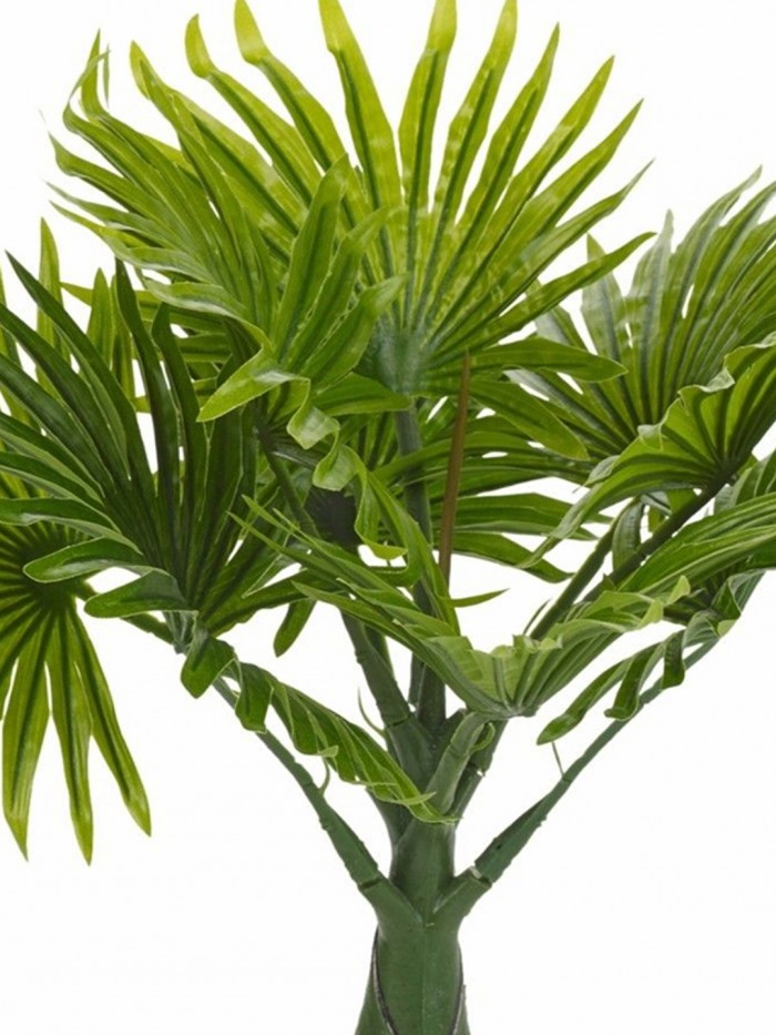 Buy Fourwalls Synthetic Artificial Bonsai Fan Palm Plant With Pot (10 Branches, Green, 40 Cm Tall) O