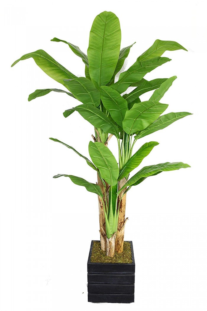 Buy Artificial Plant Without Pot Online