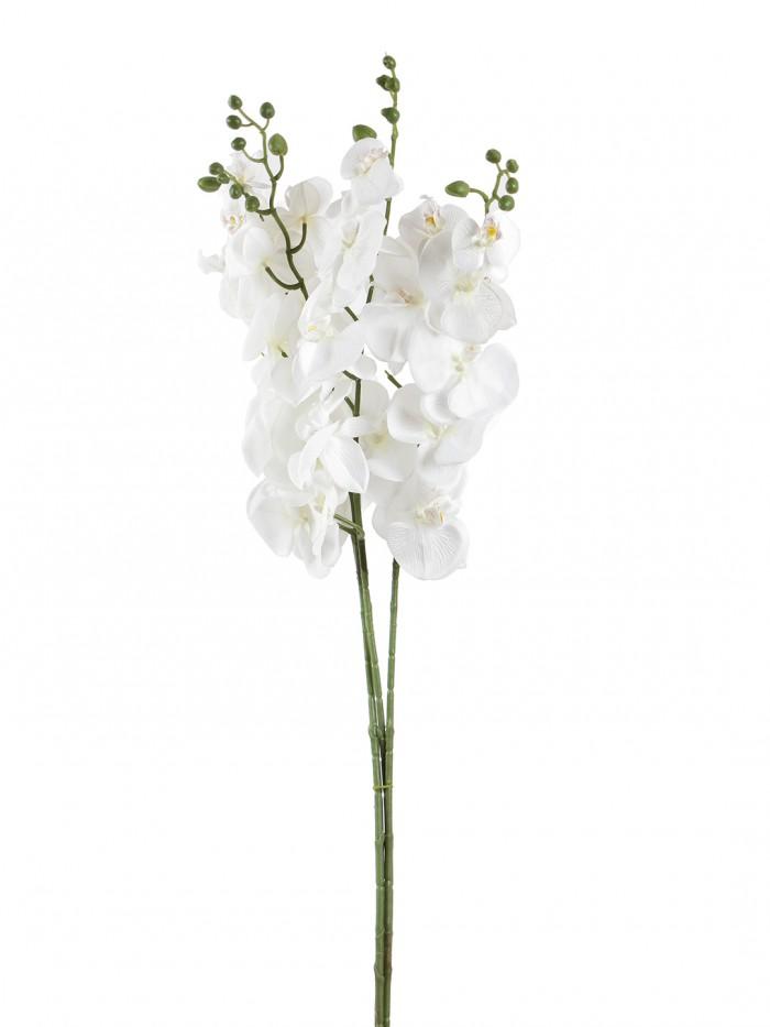 Buy Decorative Artificial Orachid Flower Stems (90 Cm Tall, White) Online