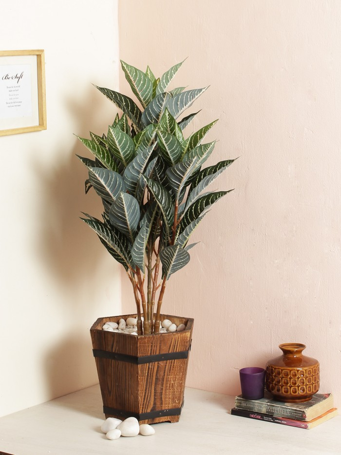 Buy Artificial Quercus Floor Plant Without Pot (70 Cm Tall, 5 Branches, Green/White) Online