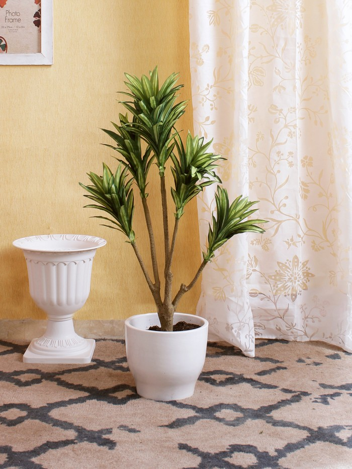 Artificial Dracaena Plant without Pot (86 cm tall, 5 branches, Green and White)