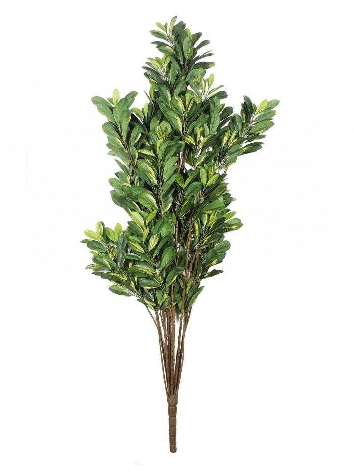 Buy Fourwalls Decorative Polyester Artificial Scheflera Plant Without Pot (150 Cm, Green, AP 150 CM