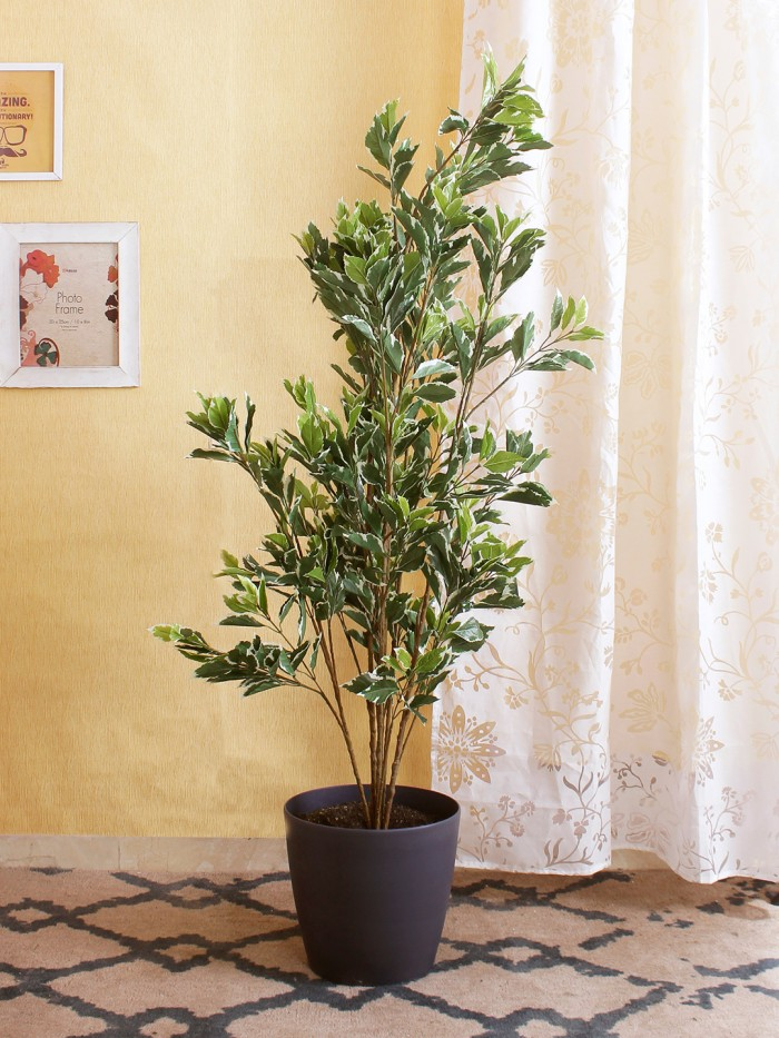 Buy 150 Cm Tall Decorative Artificial Pothos Plant Without Pot Online