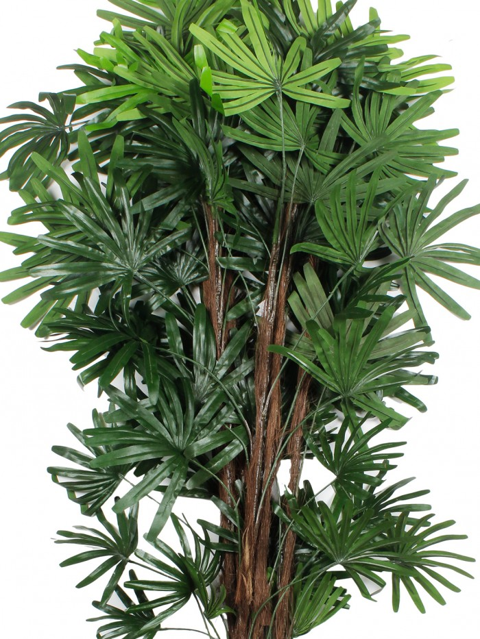 Buy Artificial Rhapis Excelsa Floor Plant Without Pot (150 Cm Tall, Green) Online