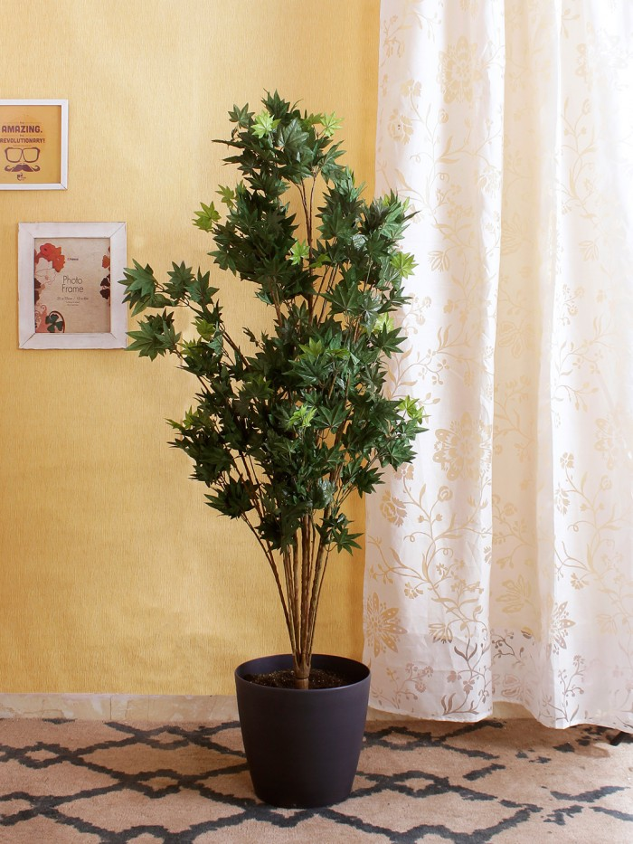 Buy Artificial Japanese Maple Floor Plant Without Pot (150 Cm Tall, Green, 10 Branches) Online