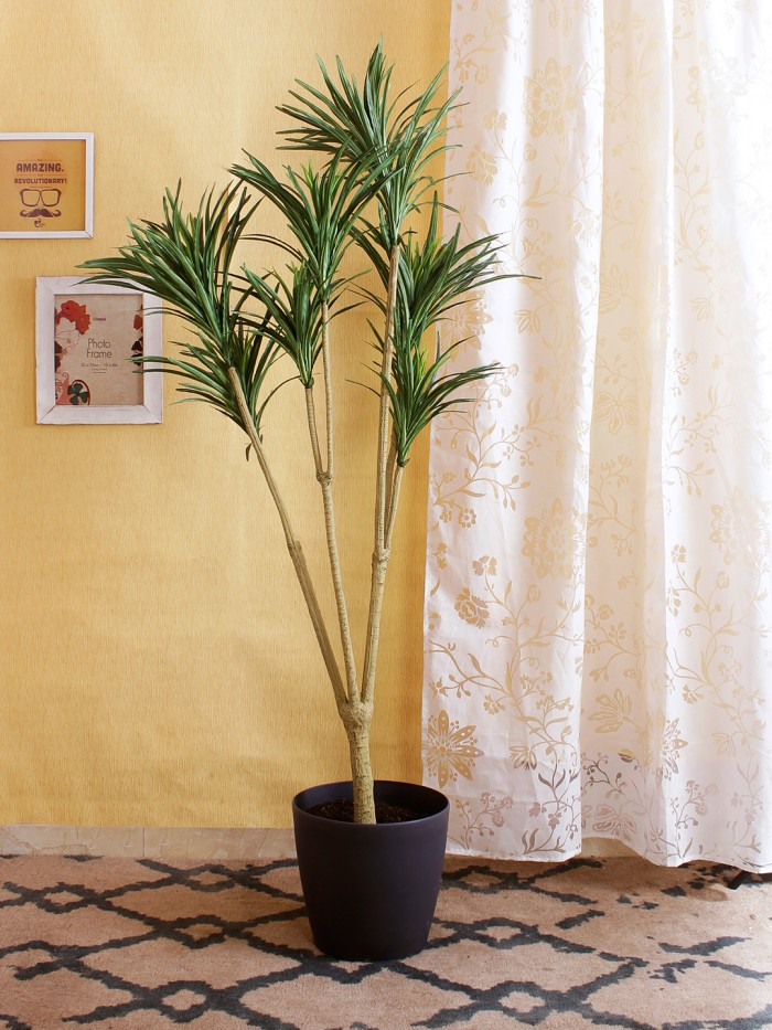 Buy Artificial Yucca Floor Plant Without Pot (160 Cm Tall, 4 Branches, Green) Online