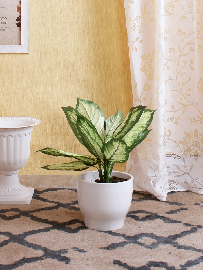 Buy Decorative Artificial Dieffenbachia Bush Without Pot (Dark Green, 52 Cm Tall) Online