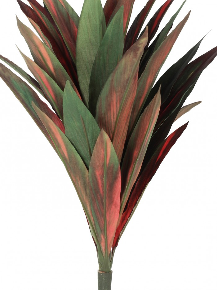 Buy Decorative Artificial Dracaena Bush Without Pot (Red And Green, 46 Cm Tall) Online
