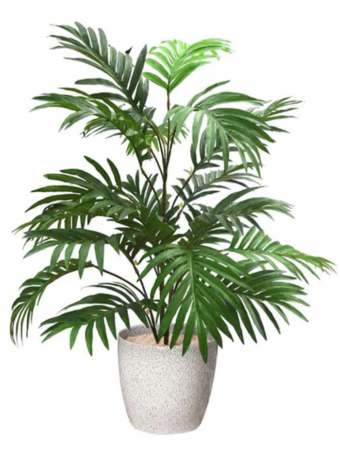 Buy Artificial Areca Plant With 21 Leaves(Green, 75 Cm Tall) Online